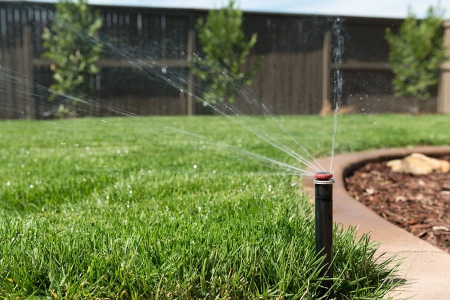 Best Sprinkler System