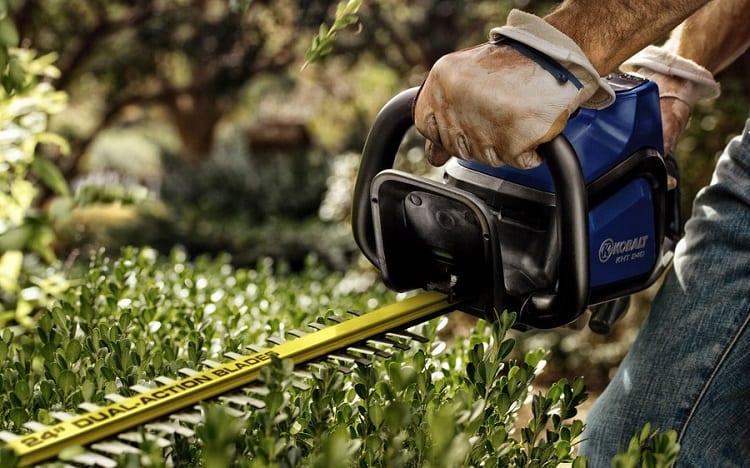 Working With Hedge Trimmer