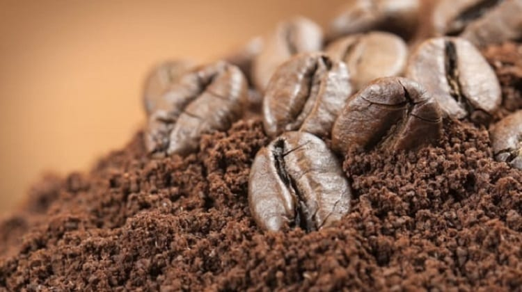 THROW COFFEE GROUNDS OVER THE SOIL