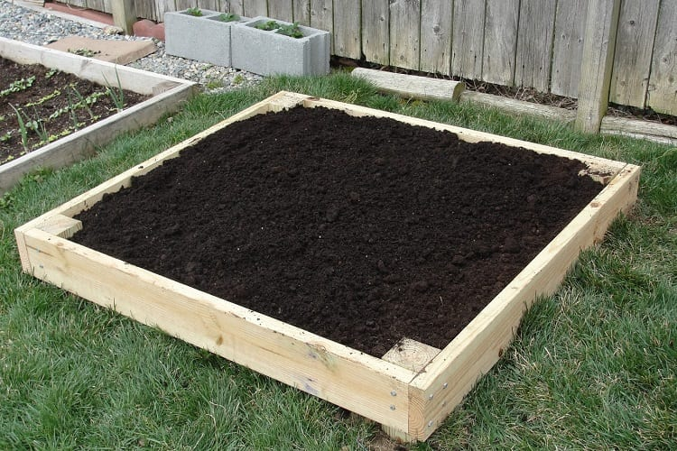 Lasagna Gardening - The Ultimate in Eco Friendly Sustainable Gardening 1