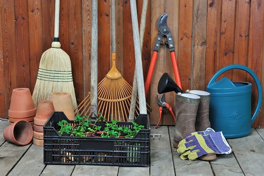 Gardening 101: The Ultimate Guide To Your Gardening Journey