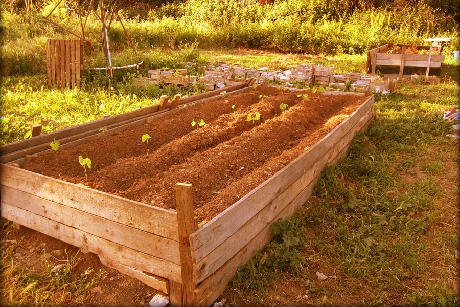 Lasagna Gardening - The Ultimate In Eco Friendly Sustainable Gardening