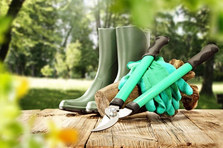What Tools Do You Need To Start Gardening?