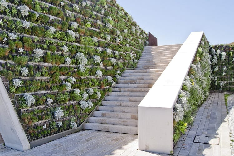 Pros And Cons Of Vertical Gardening