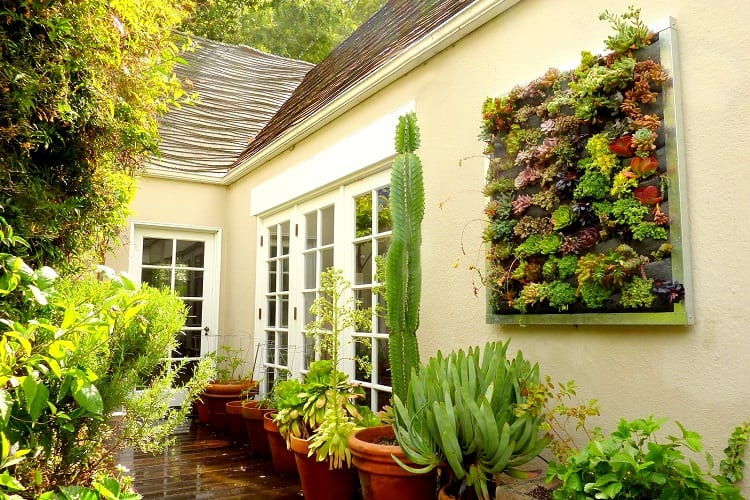 Some Great Ideas For Vertical Gardens