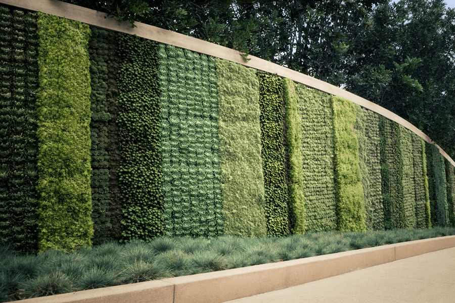 Vertical Gardens - Are They Worth It?