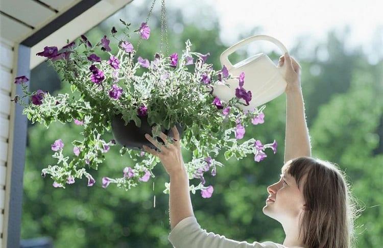 woman watering flower basket