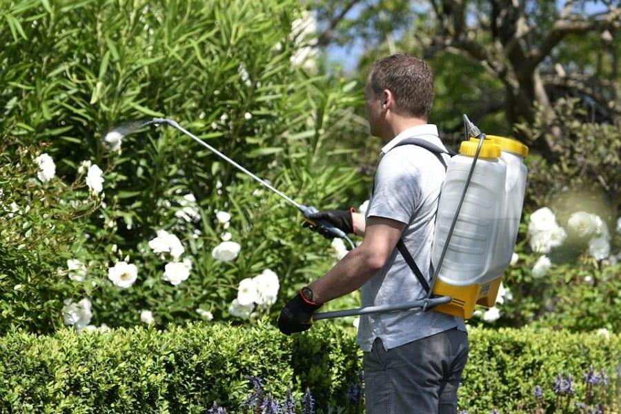 Best Garden Sprayers In 2021 Reviewed