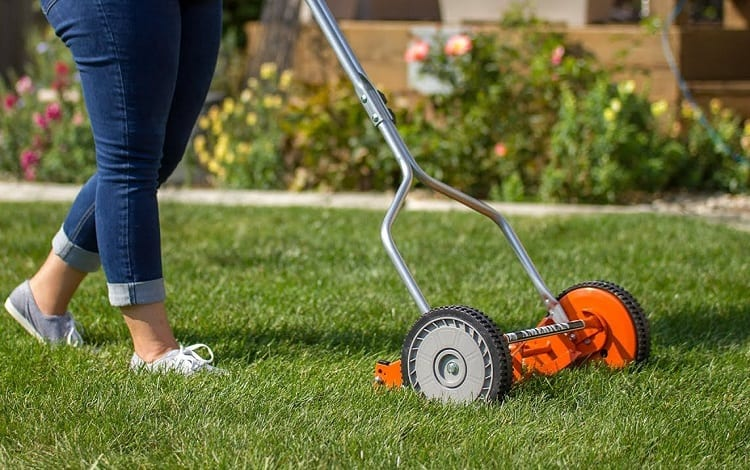DO REEL MOWERS CUT BETTER?