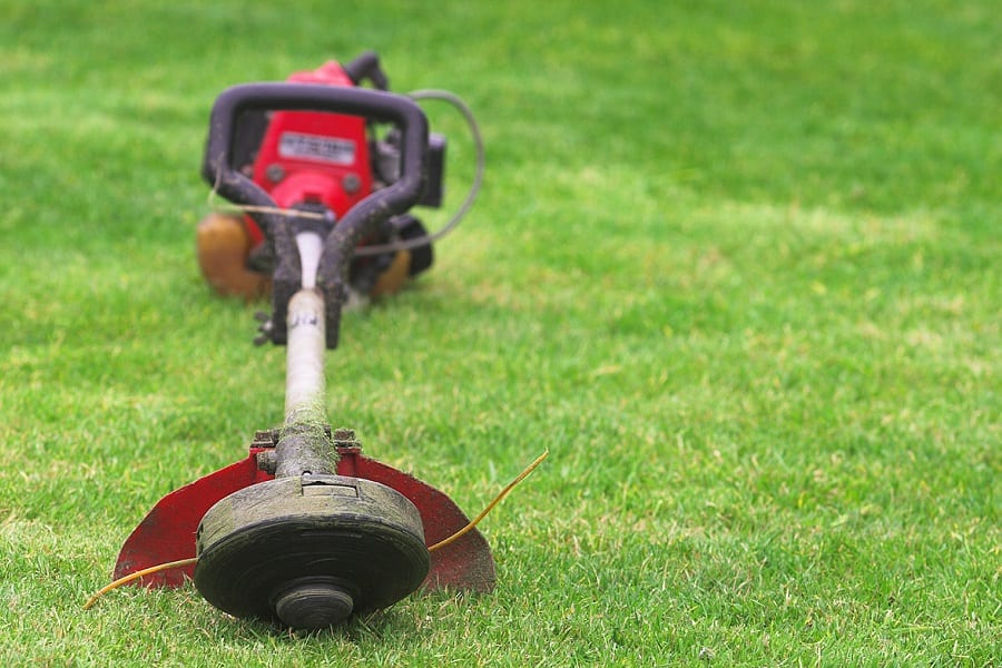 Best Battery Powered Weed Eater: Weed Free Gardens Made Easy