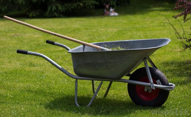 WHAT SHOULD YOU LOOK FOR IN A GARDEN CART OR WHEELBARROW?