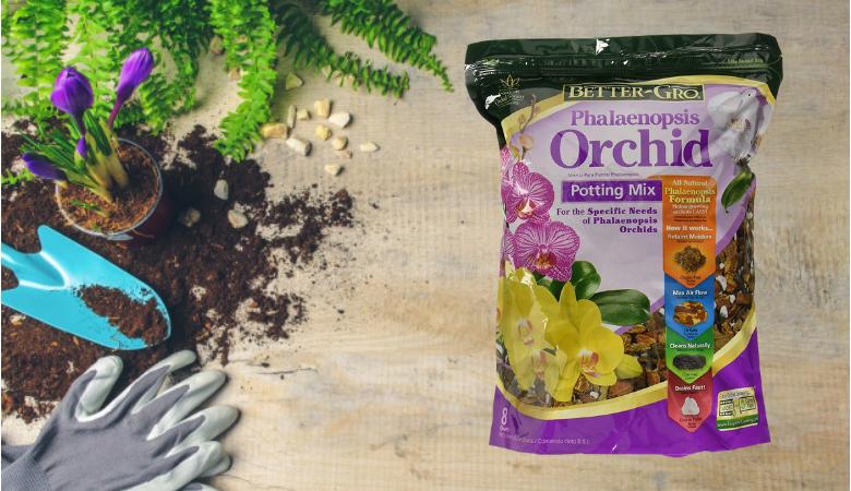 Alternative: Better Gro Phalaenopsis Orchid Potting Mix garden soil