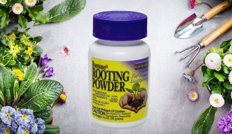 Alternative: Bonide Bontone Rooting Powder