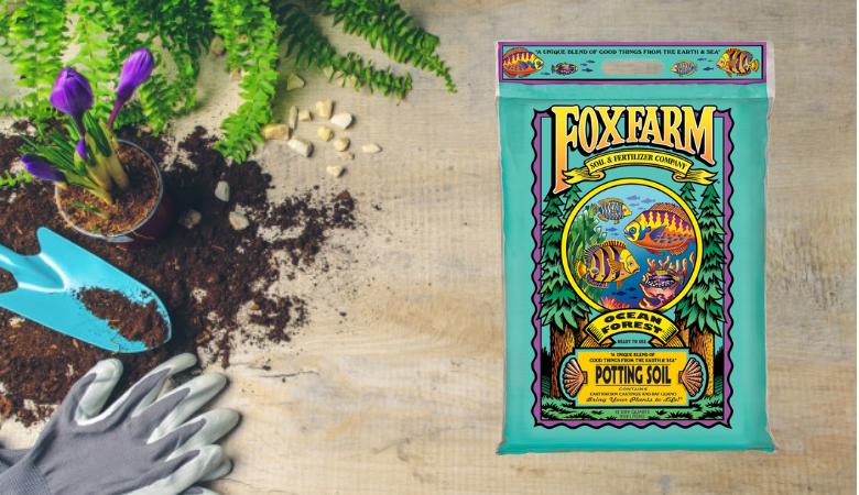 Winner: Fox Farm Ocean Forest Potting Soil