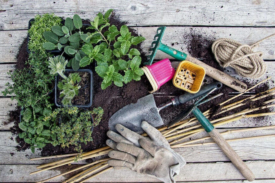 15 Gardening Hacks To Take You From Beginner To Pro