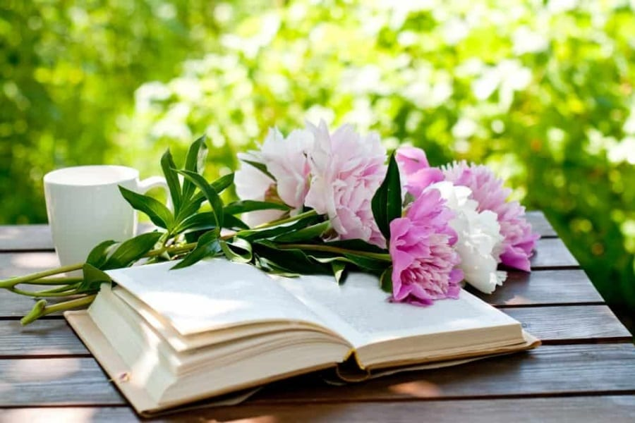 Best Gardening Books Review