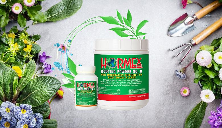 Alternative: Hormex Rooting Hormone Powder rooting hormone