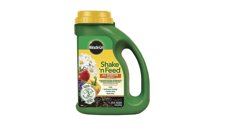 Miracle Gro Shake n Feed