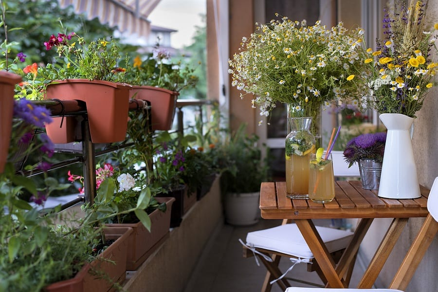 Balcony Gardening – Is This Green Trend Worth It?