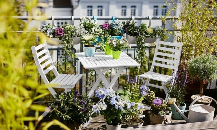 What is Balcony Gardening?