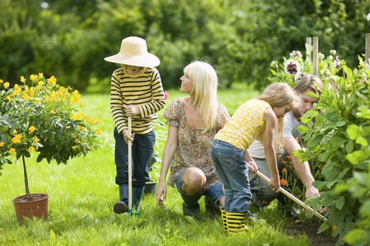 How Difficult is Gardening?