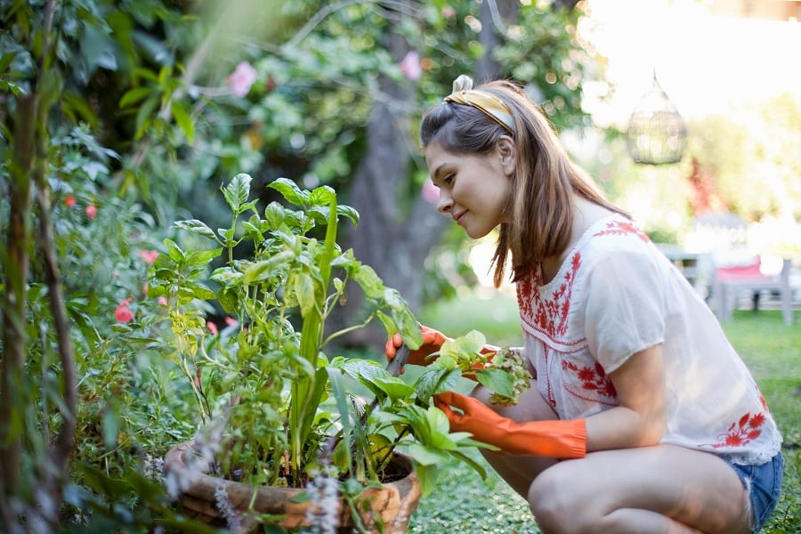 Is Gardening A Good Workout?