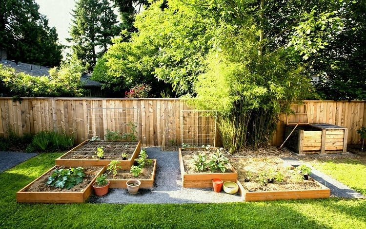 The Layout of Your Garden