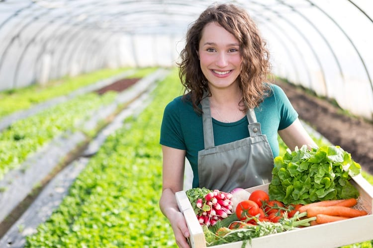 Vegetables to Avoid in Your Greenhouse