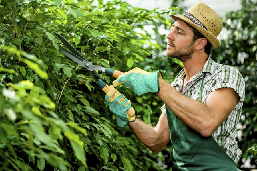 The Essential List Of Gardening Clothes
