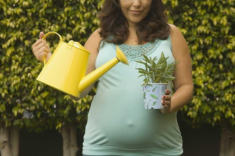 Should You Be Gardening While Pregnant?