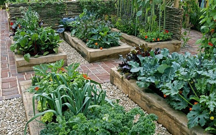 A Happy, Shaded Garden