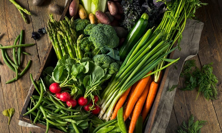 How Often Should You Water Vegetables?