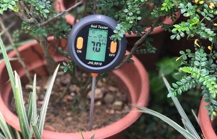 soil tester in pot